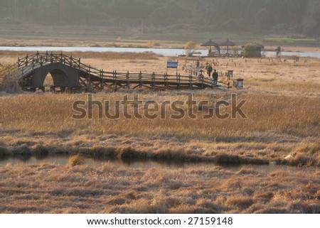 wooden pathway vanishing in the marsh,Yunnan Tengchung's wetland - stock photo