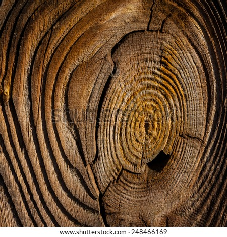 wooden pattern of knotted old board - stock photo