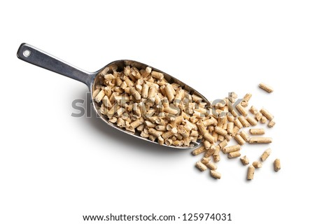 Wooden pellets -bio fuel on scoop. - stock photo