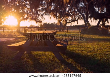 Wooden picnic table in field with trees at sunset sunrise golden hour looking peaceful serene meditative warm relaxing restful - stock photo