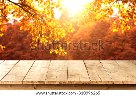 wooden pier and autumn  - stock photo