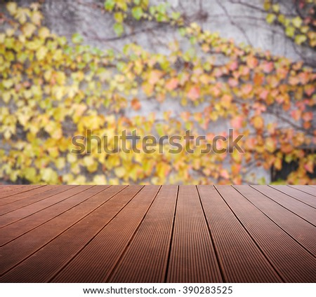Wooden platform and blurred Boston ivy background. - stock photo