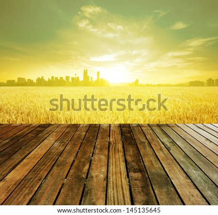 Wooden platform before Kuala Lumpur capital city of Malaysia, landscape view over paddy field plantation in morning sunrise - stock photo
