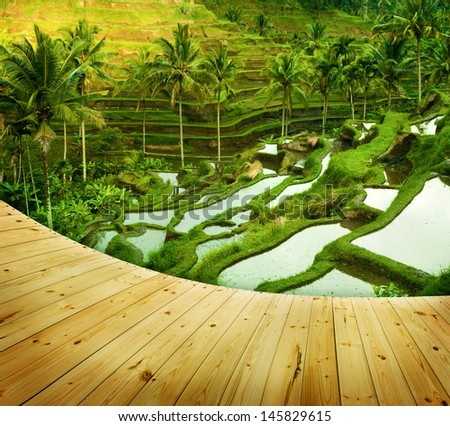 Wooden platform beside terrace rice fields in morning sunrise, Ubud, Bali, Indonesia - stock photo