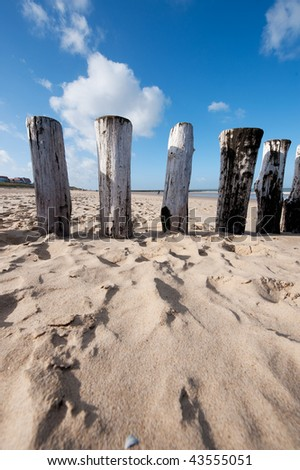 Wooden poles from the wave breaker at the Dutch beach - stock photo