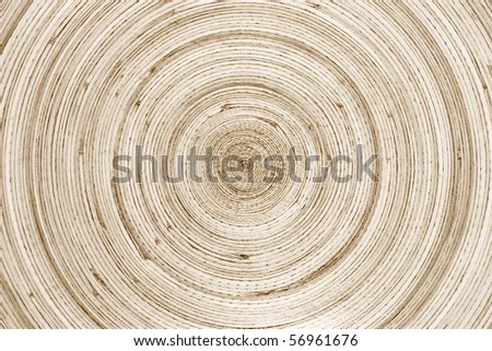 wooden rings - stock photo