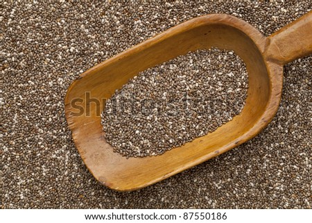 wooden rustic scoop and background of organic chia seeds rich in omega-3 fatty acids