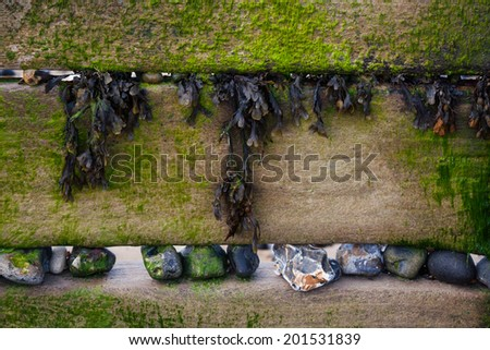 Wooden sea defence groynes, with seaweed and stones - stock photo