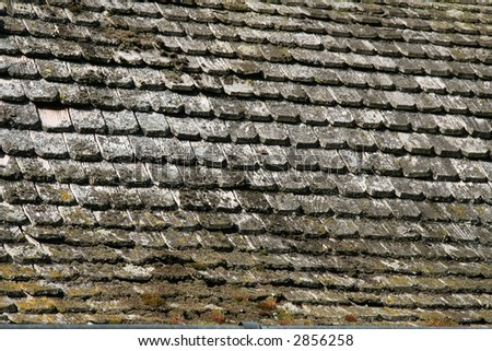 wooden shingles in sunlight - stock photo