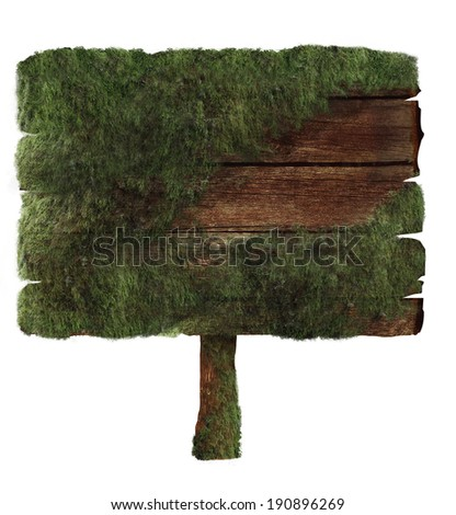 Wooden sign covered in moss isolated on white. Wood sign Design element. Clipping path - stock photo