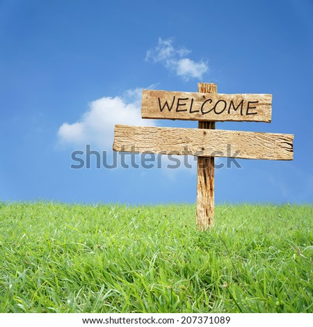 Wooden sign in green grass field over blue sky background - stock photo