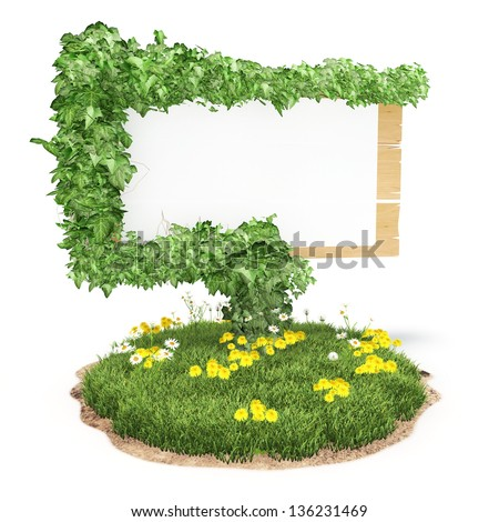 Wooden sign on the grass with ivy in the white background - stock photo