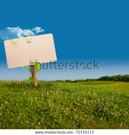 wooden sign on the left side of a green land with a blue sky, with one cloud, image is square - stock photo