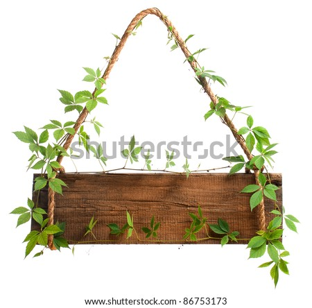 wooden sign with branches vineyard, isolated on white background - stock photo