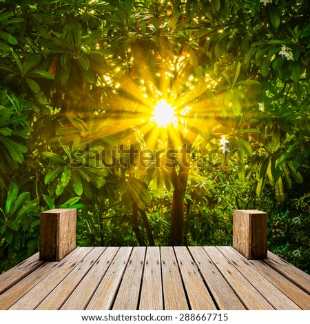 Wooden skywalk in natural garden for botany travel with sun beam - stock photo