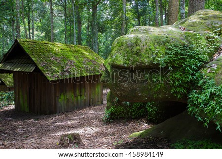 Wooden small house in the forest with moss covered .