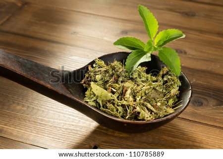 Wooden spoon filled with dried natural sweetener stevia leaves