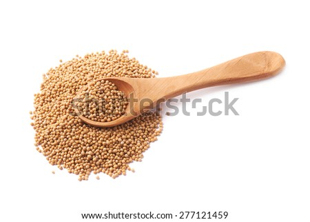 Wooden spoon over the pile of the brown mustard seeds, composition isolated over the white background - stock photo