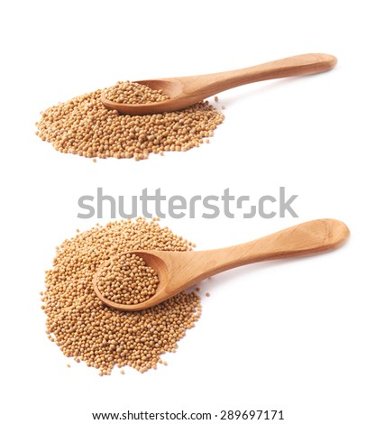 Wooden spoon over the pile of the brown mustard seeds, composition isolated over the white background, set of two different foreshortenings - stock photo