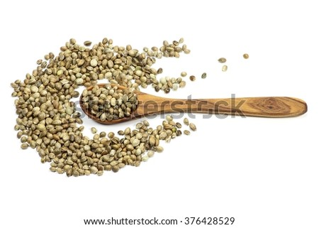 wooden spoon with hemp seeds isolated on white background - stock photo