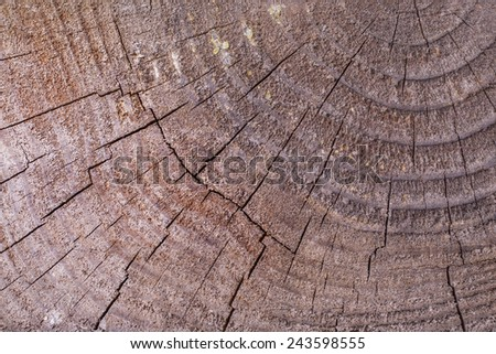 Wooden structure as a background - stock photo