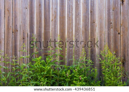 Wooden texture fence with grass at the bottom. Wall planks of wood and green vegetation - stock photo