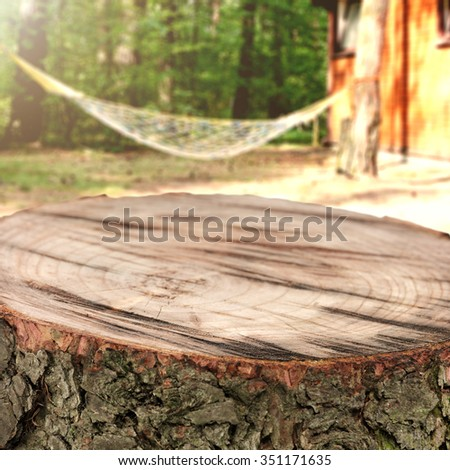 wooden top place of tree trunk and sun light