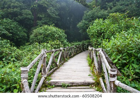 wooden trail - stock photo