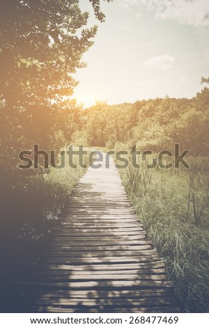 Wooden Trail in Forest in Retro Instagram Style Filter - stock photo