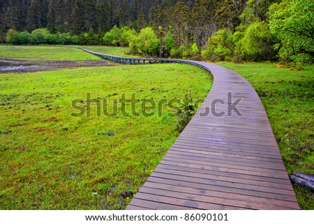 wooden trail in the Grassland after the rain.