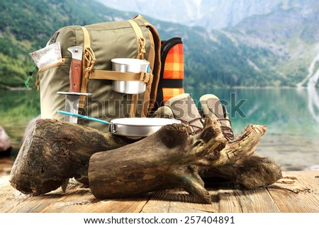 wooden tree and backpack of travel  - stock photo