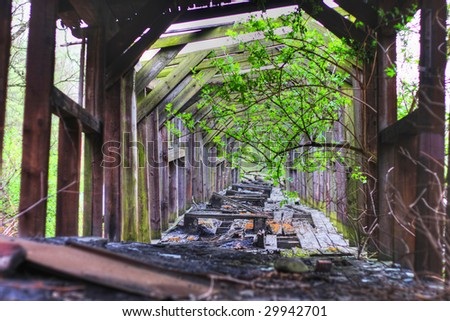 Wooden tunnel - stock photo