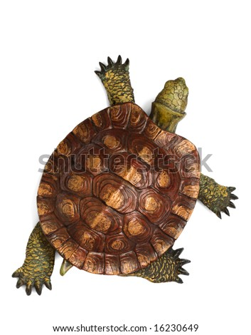 Wooden turtle - stock photo