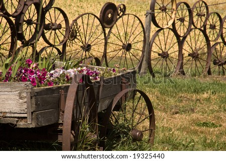 Wooden wagon containing flowers, with fence made of wheels in the ...