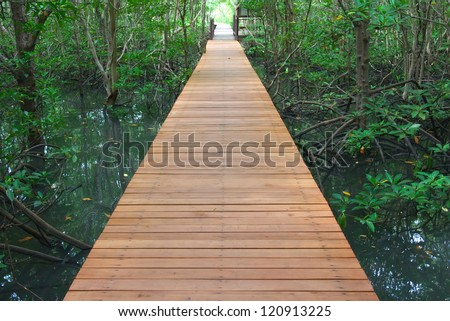 wooden walk way through the forest - stock photo