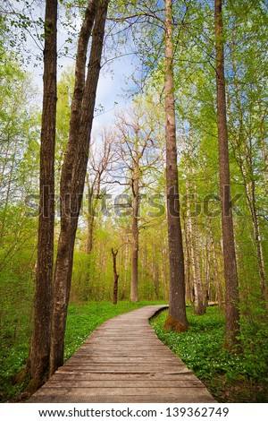 wooden walking path in a green park in spring - stock photo