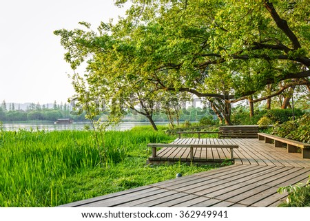 wooden walkway and green natural scenery in the summer - stock photo