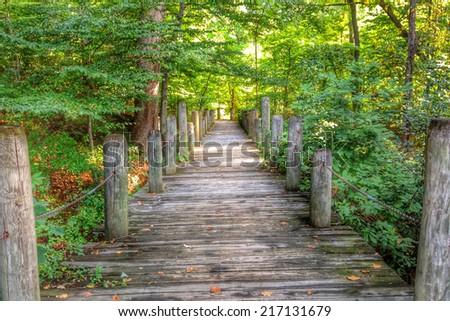 Wooden Walkway (HDR) - stock photo
