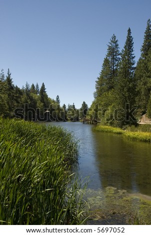 Woodland Lake in a mountain forest, California.