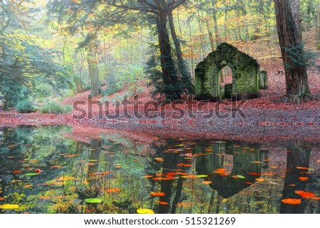 Woodland pool in Autumn. Old ruin of a folly in Rectory Wood, Shropshire, UK.