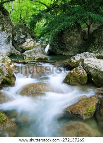 Woodland Stream in Sheffrey Wood, Ireland  - stock photo