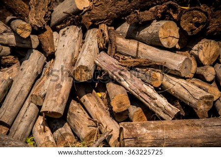 Woodpile cutting timber for the forestry.