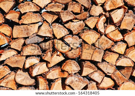 Woodpile from dry oak logs. Closeup. - stock photo