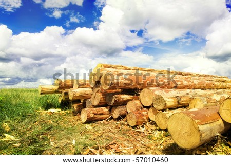 Woodpile in field - stock photo
