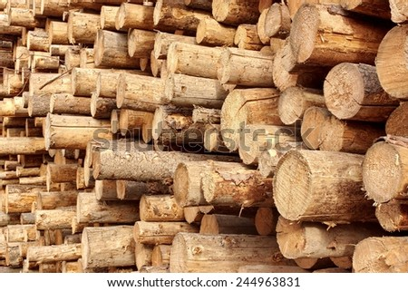 Woodpile of stacked wood logs Background or Texture - stock photo