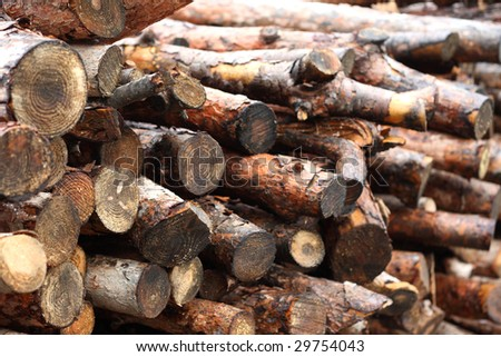 woods for fireplace - stock photo