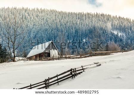 woodshed behind the fence on the hillside cowered with snow near conifer forest in winter mountains early in the morning