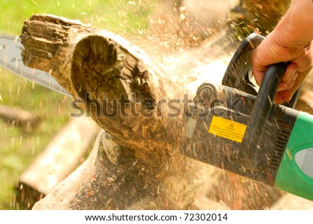 woodworking, lumbering - stock photo