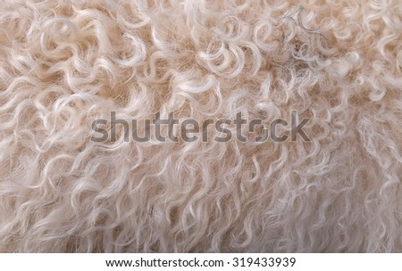 wool background color white and brown