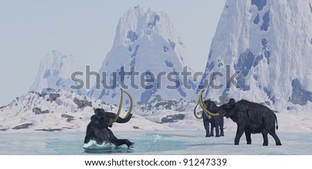 Woolly Mammoth - A bull from a Woolly Mammoth herd struggles for survival after he falls through the ice on a frozen lake. - stock photo